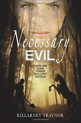 Necessary Evil by Killarney Traynor