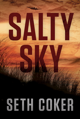 cover Salty Sky