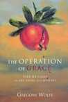 The Operation of Grace: Further Essays on Art, Faith and Mystery
