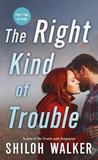The Right Kind of Trouble (The McKays, #3)