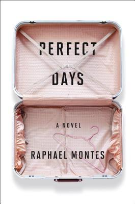 Perfect Days: A Novel