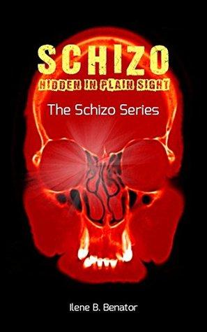Schizo by Ilene B. Benator