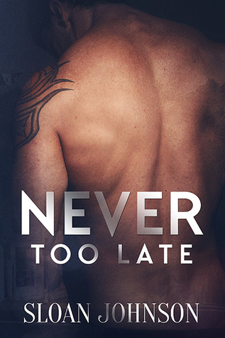 Recent Release Review: Never Too Late (Home in the Heartland #1) by Sloan Johnson