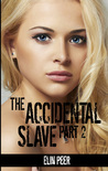 The Accidental Slave (Aya's story Part 2)