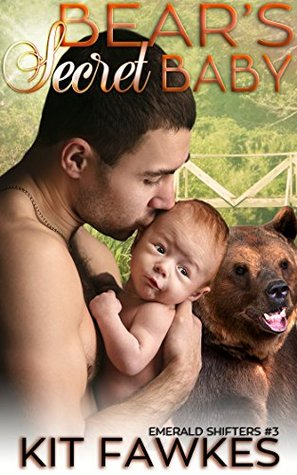 Bear's Secret Baby (Emerald City Shifters, #3)