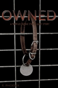 Owned: A Ripples in the Status Quo Story