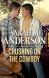 Crushing on the Cowboy (Rodeo Dreamers, #3)