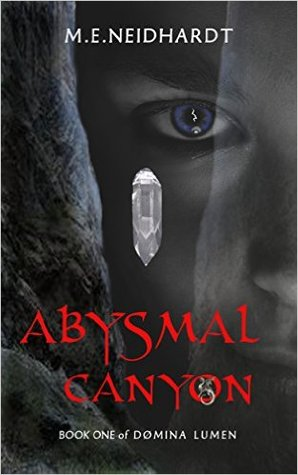 Abysmal Canyon by M.E. Neidhardt