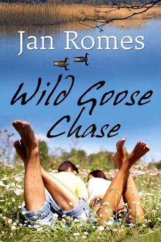 Wild Goose Chase by Jan Romes