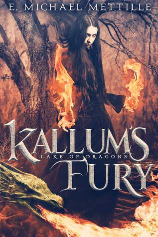 Kallum's Fury by E. Michael Mettille