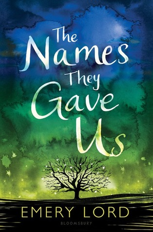 Waiting on Wednesday: The Names They Gave Us by Emery Lord